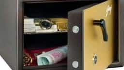 Vastu Tips: पैसों की बनी रहती है तंगी तो जानें किस तरफ तिजोरी रखने से होगी पैसों की बरसात