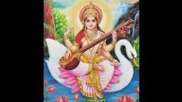 Success Mantra : सरस्वती मां के वाहन 'हंस' से सीख सकते हैं लाइफ मैनेजमेंट की ये बातें
