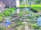negligence of municipal engineers street water started entering khadoa village homes