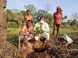 जमीन पर हरियाली लाने के लिए हरिशंकरी का रोपण