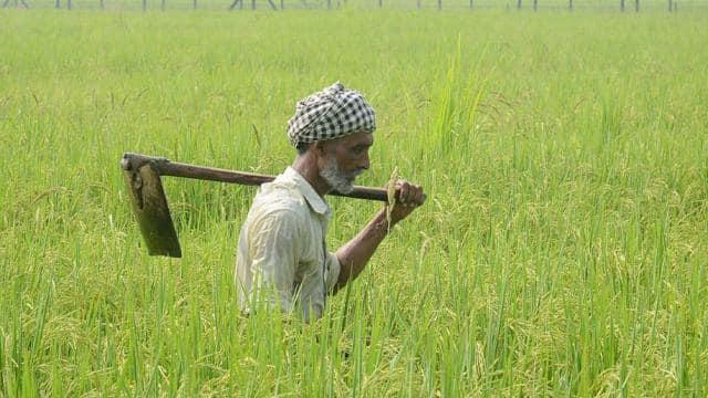 बिहार में फसल सहायता योजना के लिए अबतक 39 लाख किसानों ने किया आवेदन