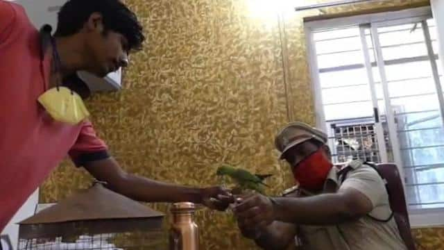 controversy between two parties behind parrot identified owner in police station in madasaur madhya