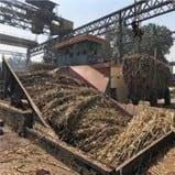 रामपुर में किसानों का 103 करोड़ दबाए बैठी हैं चीनी मिलें
