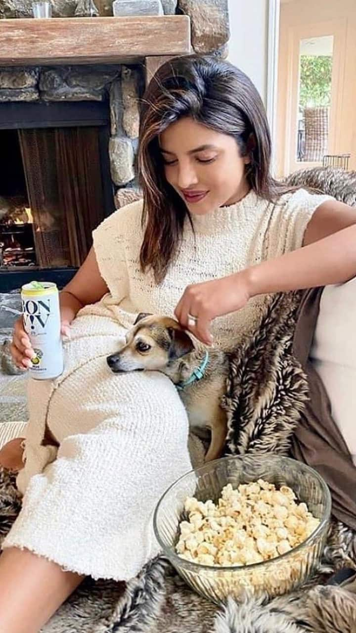 bollywood stars and their furry friends
