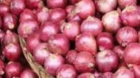 wholesale market of onion dropped  retail price on sky