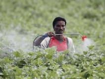 महंगाई के मामले में कृषि, ग्रामीण श्रमिकों के लिएराहत भरा रहा सितंबर