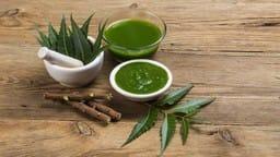 neem benefits in hindi