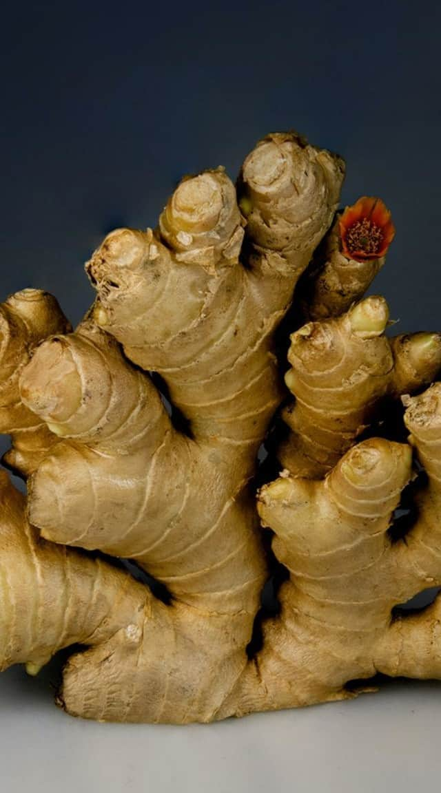 10 ways ginger makes you healthy
