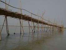 विशेषज्ञों ने चेताया, कोसी नदी को बांधने से जलीय जीवों पर बनेगा संकट