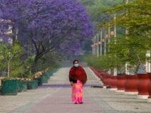कोरोना: नेपाल में लगा 15 दिनों का लॉकडाउन, जान लें नियम और शर्तें