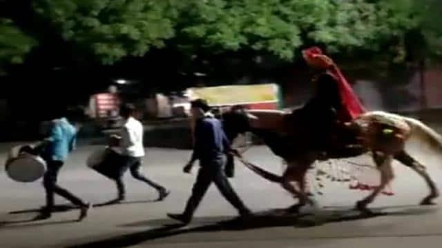 कोरोना का कहर : बिना बारात के घोड़ी पर अकेले दुल्हन लेने निकल पड़ा दूल्हा, वीडियो वायरल