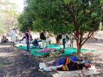 VIDEO: कोरोना काल में संतरे के बाग को बनाया अस्पताल, छापे पर हुआ फरार