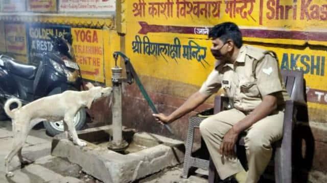 प्यासे कुत्ते को हैडपंप चलाकर इस पुलिसवाले ने पिलाया पानी, सोशल मीडिया कर रहा सलाम