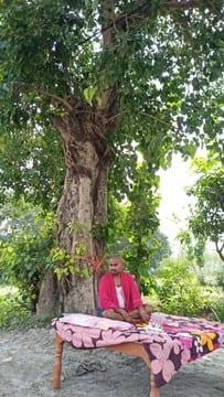 ऑक्सीजन लेवल दुरूस्त रखने के लिए पीपल के पेड़ के नीचे बनाया आशियाना