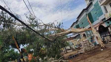 सोमवार देर रात आई आंधी बारिश ने पूरे शहर की बिजली आपूर्ति ठप कर दी। दिल्ली रोड,कांठ रोड,संभल रोड पर पोल गिर गए, कई स्थानों पर पेड़ों के बिजली तारों...