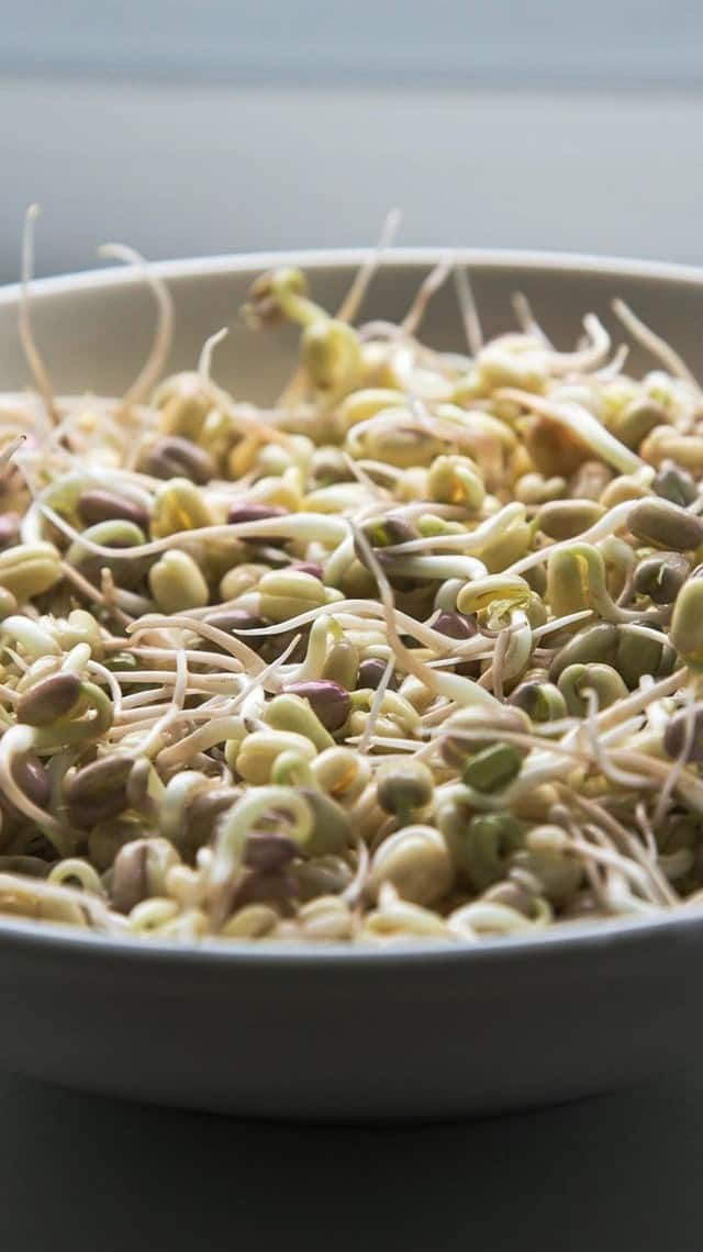 how sprouts make you healthy