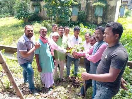 सोनुवा के जगन्नाथ मंदिर परिसर में किया पौधरोपण