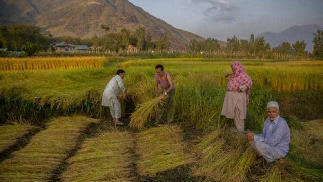 पीएम किसान: ये 3 आसान स्टेप्स आपको दिला सकते हैं 4000 रुपये